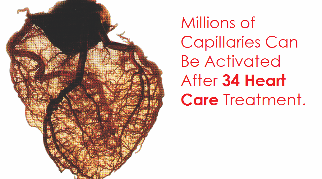 Development of millions of Capillaries and Collateral Arteries